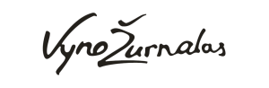 VZlogo PNG - Copy